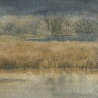 Winter Cattails II by Lois Lovejoy