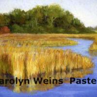 Carolyn Weins Postcard