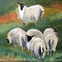 Watching Over Ewes | Acrylic | Janice Botsford