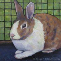 Dutch Bunny | Acrylic | Susan Clinthorne