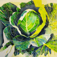 Community Cabbage | Watercolor | Carol Evert