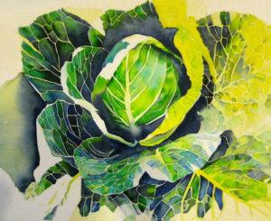 Community Cabbage | Watercolor | Carol Evert