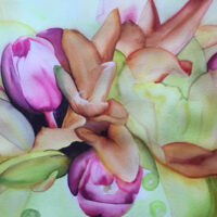 Tulip | Watercolor | Carol Evert