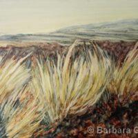 Big Island Grasses | Watercolor | Barb Gilbert