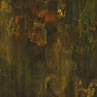 The Presence II | Fluid Acrylic | Sandy Knapp