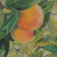 Peaches | Encaustic | Gwyn McKay
