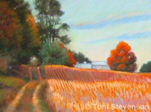 Walking the Bean Fields | Pastel | Toni Stevenson