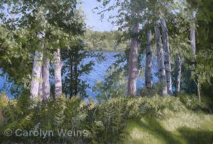 Birches Greet the Morning | Pastel | Carolyn Weins