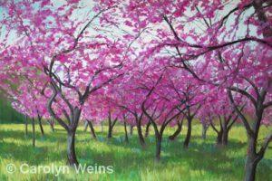 Red Buds Dancing | Pastel | Carolyn Weins