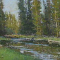 Cedars in Shadow   Pastel   Ed Kennedy