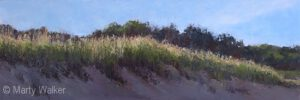 Grassy Dune Lake Michigan | Marty Walker