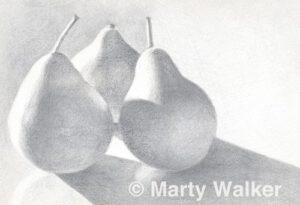 Trio of Pears | Silverpoint | Marty Walker
