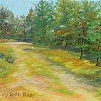 Camp Road, UP | Oil | 16 x 20"
