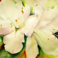 Art Prize Flower | Watercolor | Carol Evert