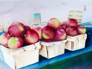 Farmer's Market Apples | Watercolor | Carol Evert